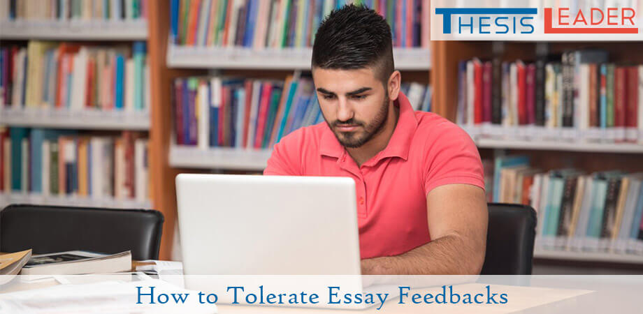 Essay Feedbacks